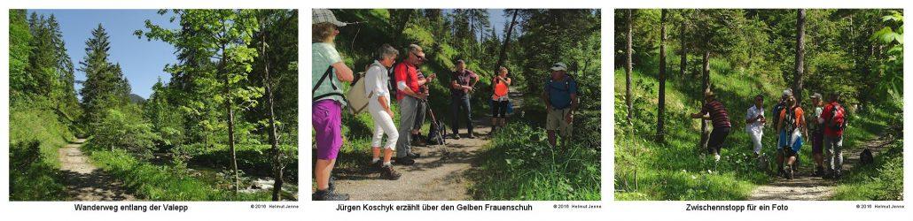 Geführte Wanderungen in Schliersee