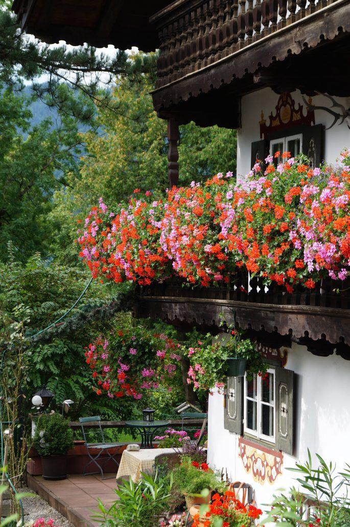 Hängende Gärten Archive Schliersee Magazin